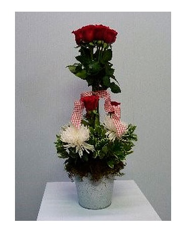 Rose Topiary in Tin