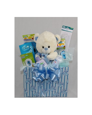 cd2b55d15d2a Quick view Baby Boy Welcome Basket