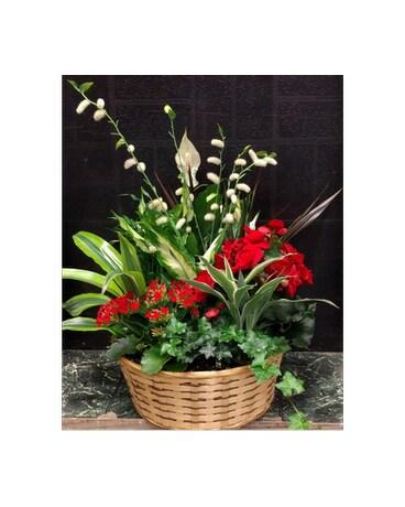 European Garden in West Des Moines IA - Nielsen Flower Shop Inc.