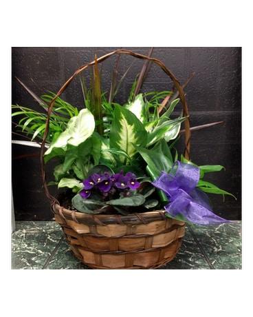 Small European Garden in West Des Moines IA - Nielsen Flower Shop Inc.