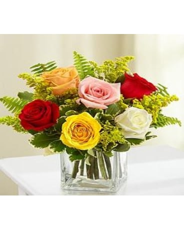 MODERN EMBRACE ROSES BOUQUET