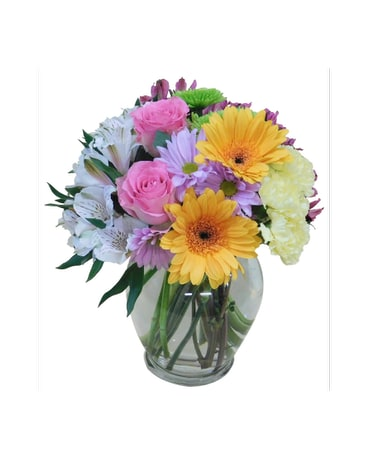 Colorful Posies