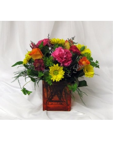 Mixed arrangement in orange cube