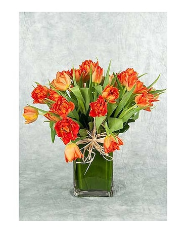 Orange Tulips in a Vase