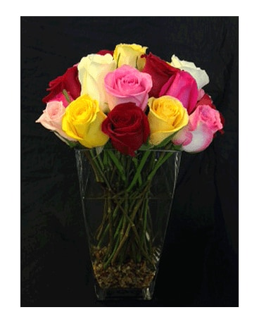 Rainbow Roses with River Rock
