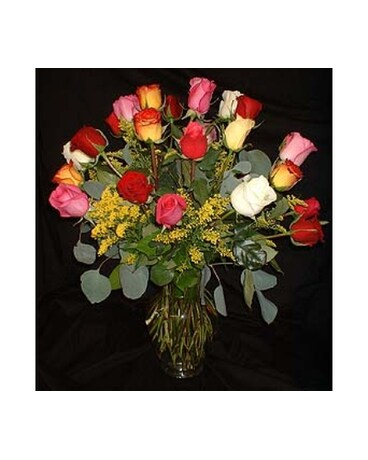 *WEEKLY SPECIAL* 24 Rainbow Roses - Colorful!