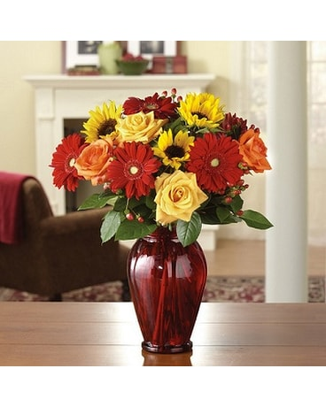 Ruby Array in Philadelphia PA - Stein Your Florist