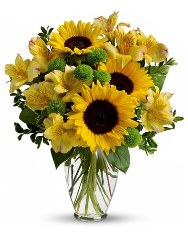 Mclean florist flower delivery by myflorist soak up the sun mightylinksfo