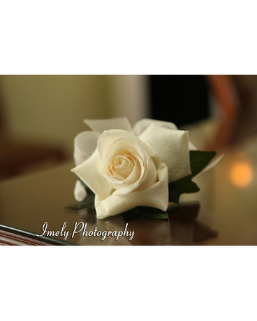 Open white rose corsage