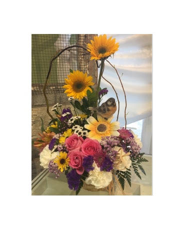 Birthday flowers delivery spring hill fl sherwood florist plus nursery quick view song bird of spring mightylinksfo