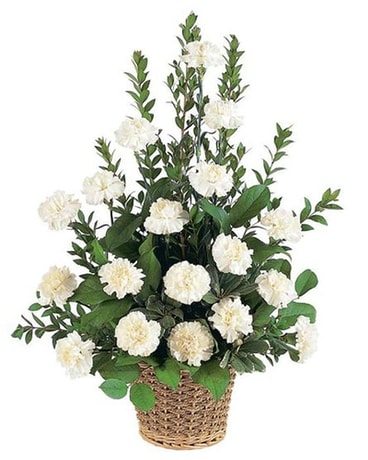 white carnation sympathy basket fallon s flowers
