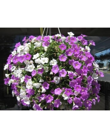 canton michigan florist delivery westland mi westland florist greenhouse