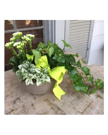 Memphis florist flower delivery by le fleur tranquil garden mightylinksfo