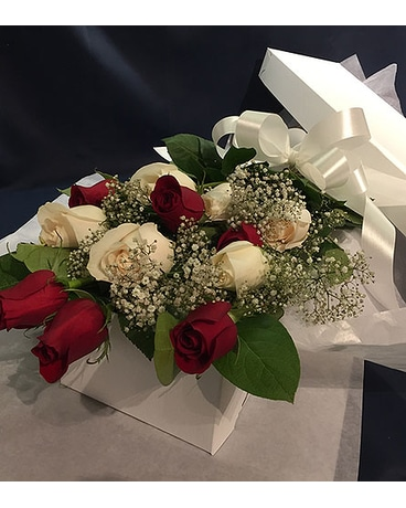 12 Mixed Red and White Roses Boxed