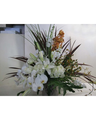 Lavish Orchid Arrangement