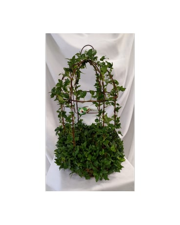 English Ivy Birdcage