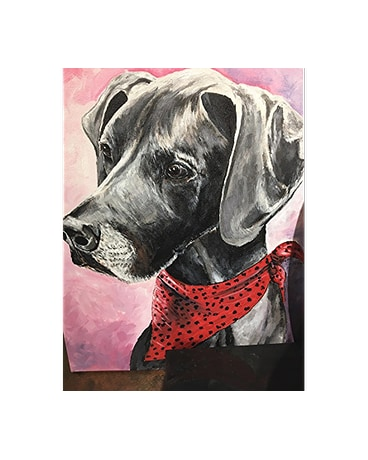 80af2b0eb455 Custom Pet Portraits Delivery Independence MO - Alissa's Flowers ...