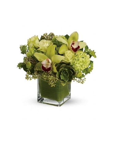 Rainforest Bouquet $54.99-$84.99