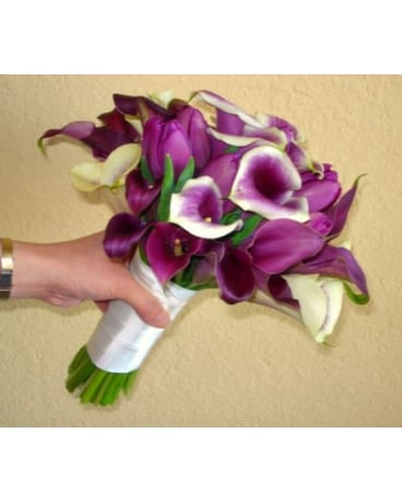Picasso Calla Lilies Deep Eggplant Toned Calla Lilies And More