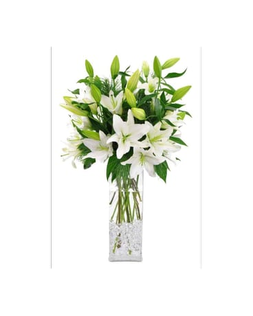 Winter White Lilies