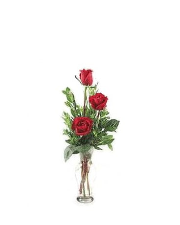 3 Red Rose Budvase with tube of lotion