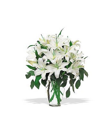 Perfect white lilies in toronto on ginger flower studio perfect white lilies mightylinksfo