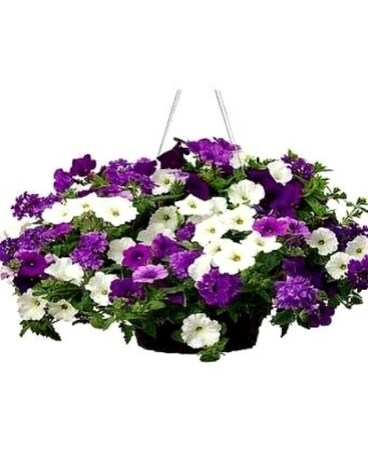 Outdoor Hanging Basket w/bow