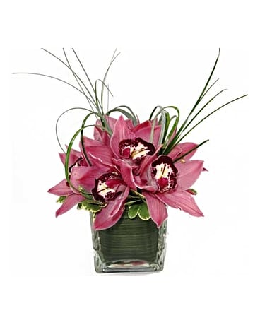 Cymbidium Centerpiece