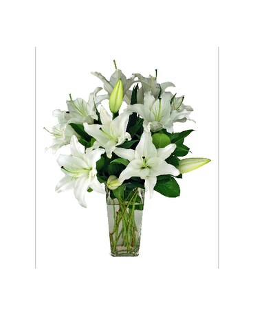 White stargazer lilies in indianapolis in 317 flowers white stargazer lilies mightylinksfo