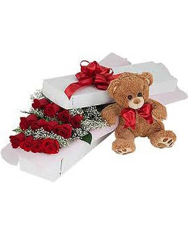 Dozen RED Roses Boxed With Teddy Bear