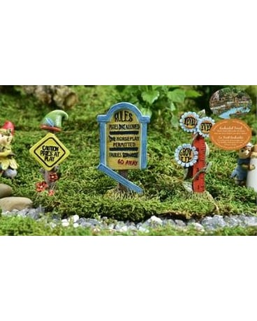 Create A Mini Fairy Garden Delivery Guelph On Patti S Flower Boutique