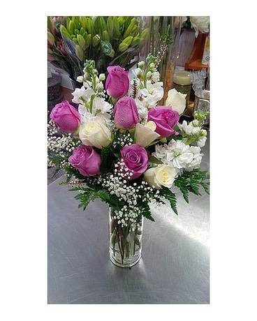 Premium purple and white roses