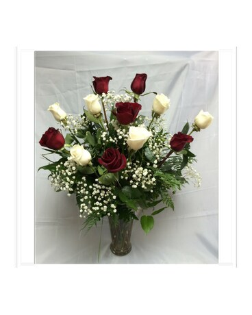 Doze Red & White Roses