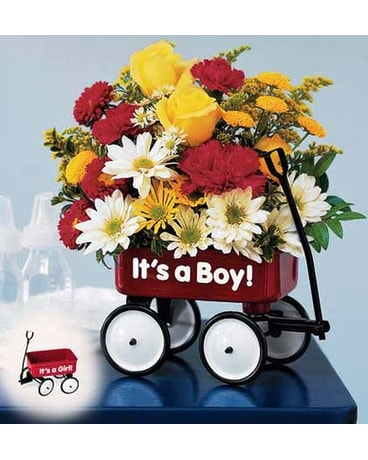 TN Baby's First Wagon Bouquet Boy