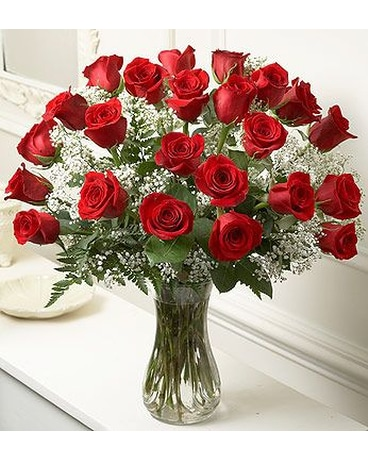 24 Red Roses with Baby's Breath