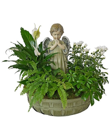 Praying Angel Plant Basket