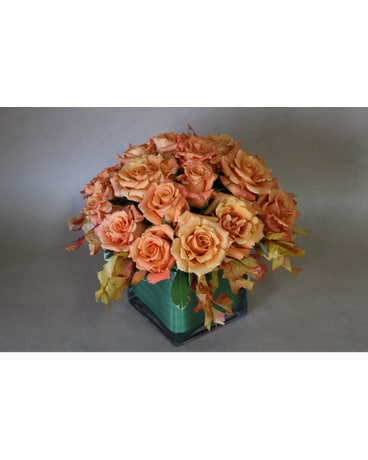 Sunset Roses