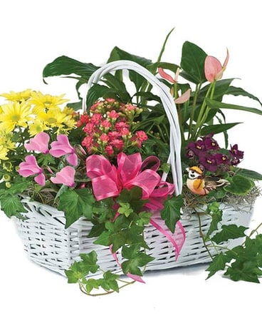 Blooming Garden Basket by Hoogasian Flowers
