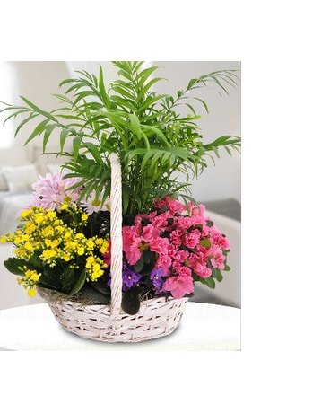 Blooming Garden Baskets and Double Azalea Basket