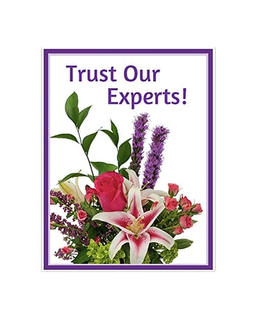 Trust Our Experts