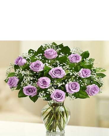 18 Premium Long Stem Purple Roses