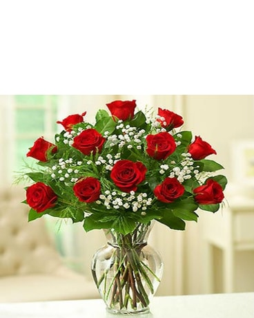 1 DOZEN RED ROSES W/BABY'S BREATH