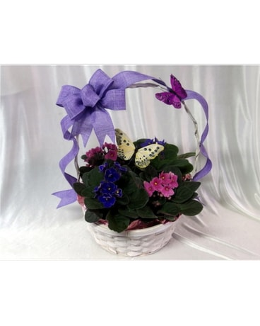 Butterfly and Violet Basket