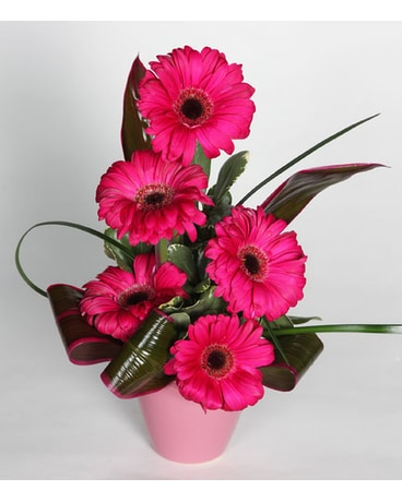 Gerbera Vase 3 Colors Available In Southampton Pa Domenic