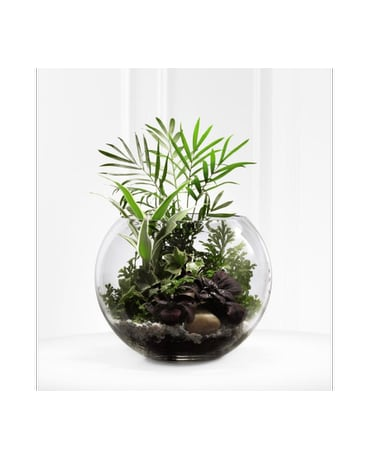 Woodland Greens Terrarium