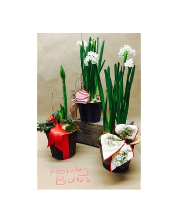 Holiday Bulbs