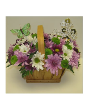 Get Well Spring Daisy Basket