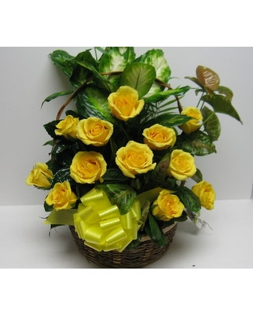 Extra Large Yellow Rose Garden In Waverly Ny Jayne S Flowers And Gifts