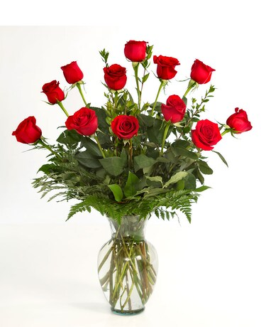 1 Dozen Red Roses Arranged