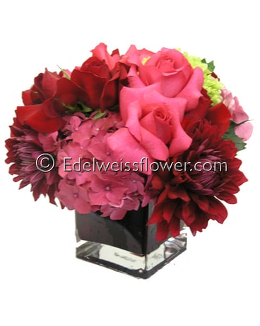 Jewel Tone Flowers